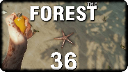 THE FOREST #36 - Winnifred, der Seestern - Let's Play