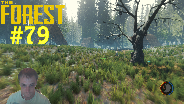 THE FOREST [HD] [FACECAM] [0.06B] #79 - Unsichtbar bewaffnet ☼ Let's Play The Forest