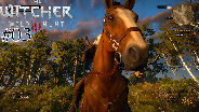 THE WITCHER 3 [HD] #03 - Gigantischer Wellensittig ☼ Let's Play The Witcher 3 Wild Hunt