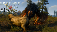 THE WITCHER 3 [HD] #13 - Kampf gegen den Greifen ☼ Let's Play The Witcher 3 Wild Hunt