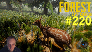 THE FOREST #220 - Noch mehr Dach ☼ Let's Play The Forest [HD] [0.24] [LPT]