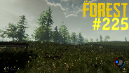THE FOREST #225 - Waldrodung ☼ Let's Play The Forest [HD] [0.36]