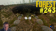 THE FOREST #243 - Update, der Steinige Weg ☼ Let's Play The Forest [HD] [0.38]