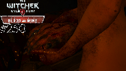 THE WITCHER 3 [DLC#2] #250 - Massaker am Weingut ☼ Let's Play The Witcher 3 Wild Hunt